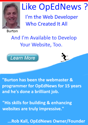 OpEdNews Website Developer Available to Work on Your Website