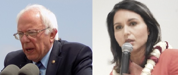 Bernie Sanders and Tulsi Gabbard, From InText