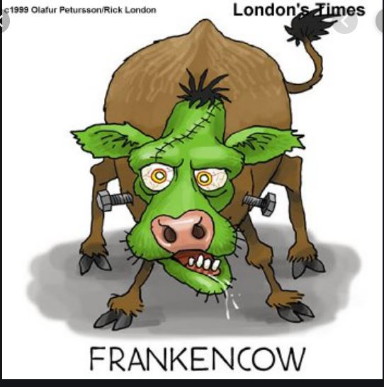 FrankenCow, From InText